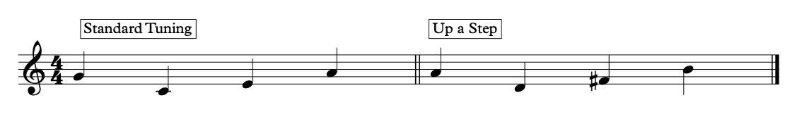 These are the notes you tune the ukulele to. Start with the string closest to you.